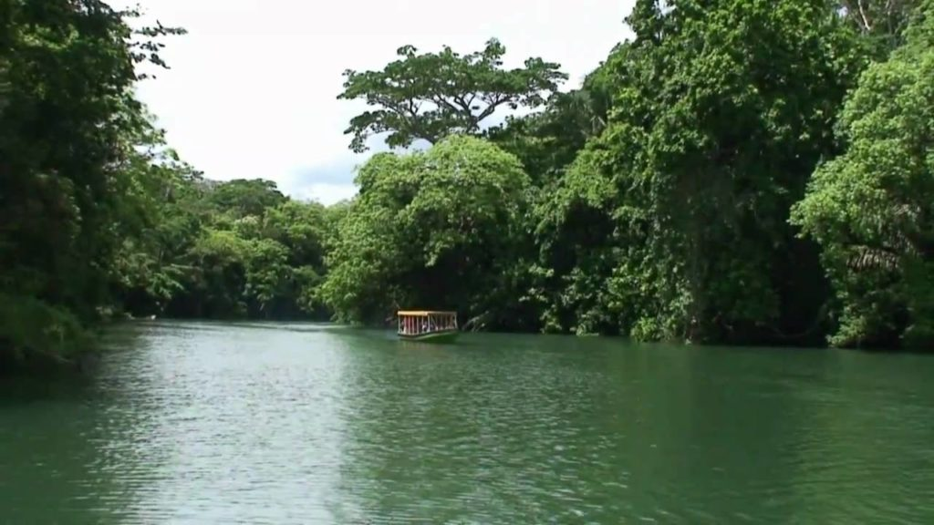 Panama Canal Eco Cruise and Rainforest Embera Indigenous Village Tour